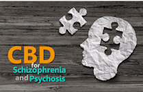 research on how CBD works for psychosis and schizophrenia
