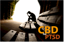 research on how CBD works for PTSD