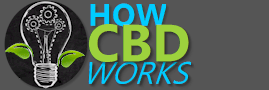 home page for how CBD works